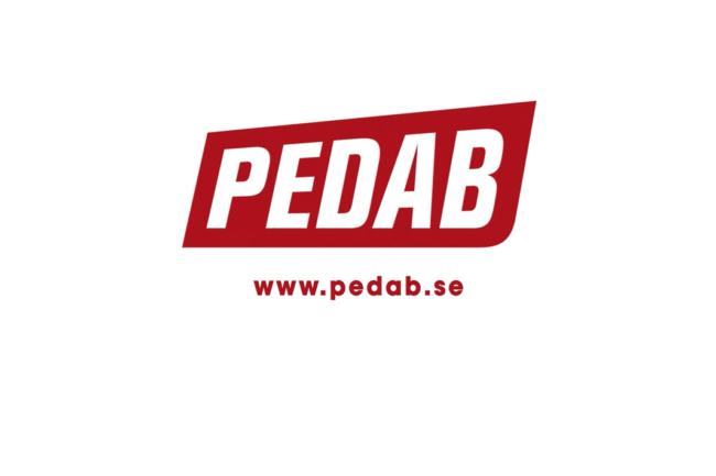Daniel Vållberg Swedish Voice Client Pedab